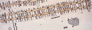 Plan of the Qin dynasty shipyard site
